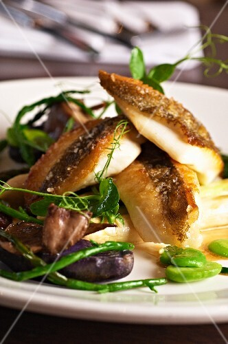 John Dory with Vitelotte potatoes