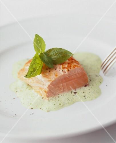 Salmon fillet on basil foam
