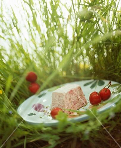 Meat terrine in a meadow