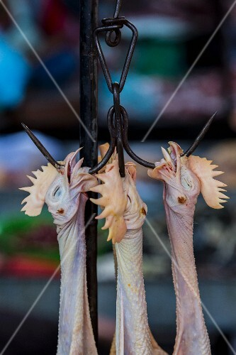 Fresh hens on meat hooks at a market in Phnom Penh, Cambodia
