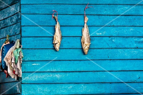 Fish hung up to dry on a wooden house (Cambodia)