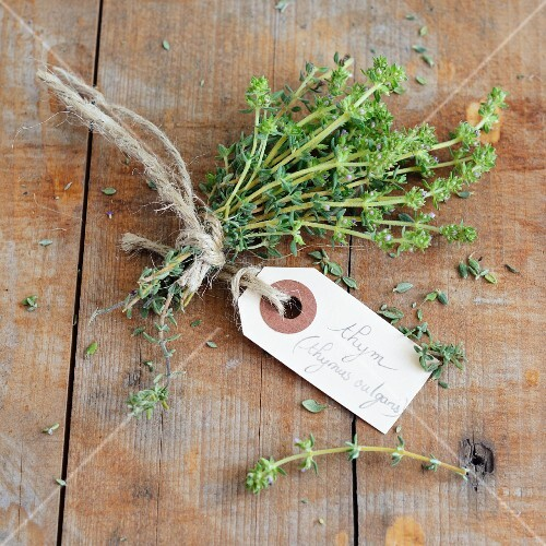 Thyme with a hand-written label