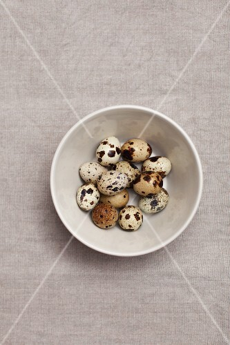 Quail's eggs in a bowl (view from above)