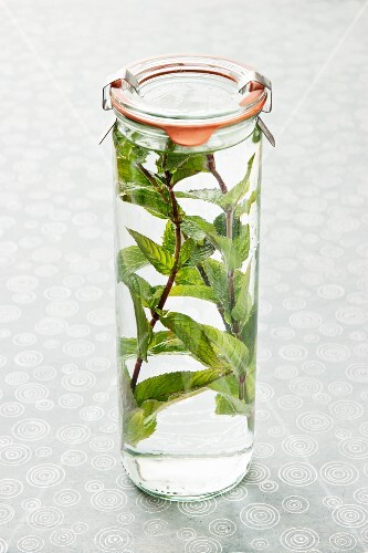 A preserving jar with water and fresh mint