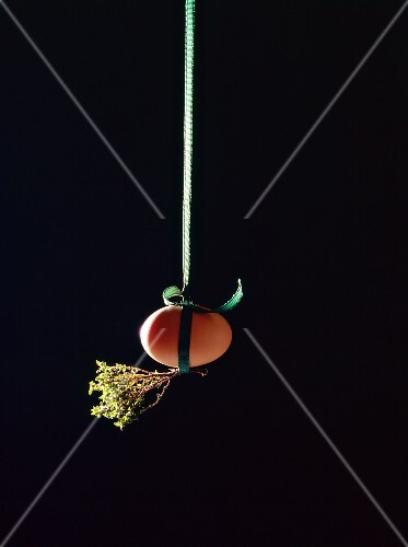 A brown hen's egg and sprigs of thyme hanging by a ribbon