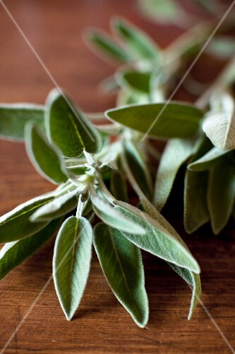Fresh sage on a wooden table (close-up)