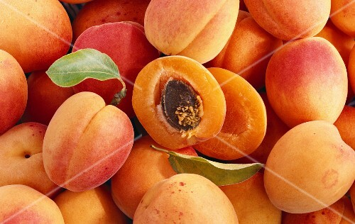 Lots of whole apricots and a halved apricot