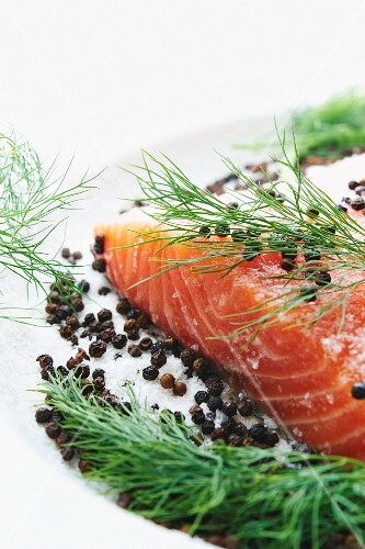 Raw Salmon and Curing Ingredients