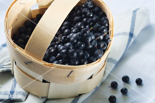 Bilberries in a punnet