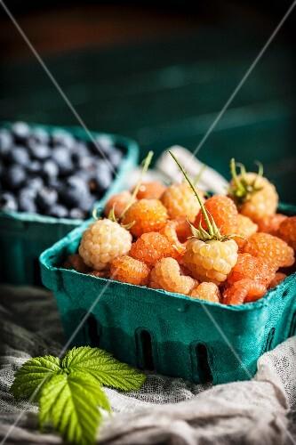 Fresh Golden Rasperries