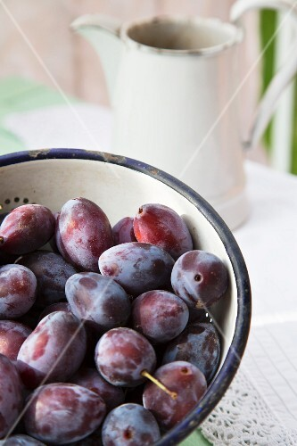 Plums in an enamel colander