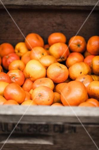 Mandarins in a crate