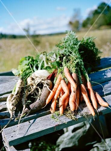 Ecological vegetables.