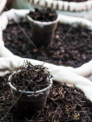 Black tea from Georgian plantation sold on a local market.