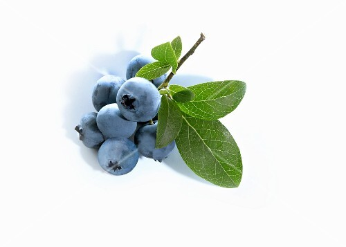 Blueberries with leaves (close-up)
