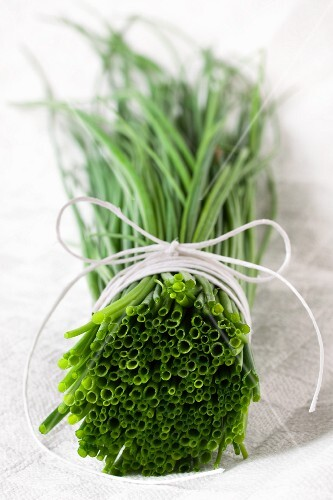 A bunch of chives on a white cloth