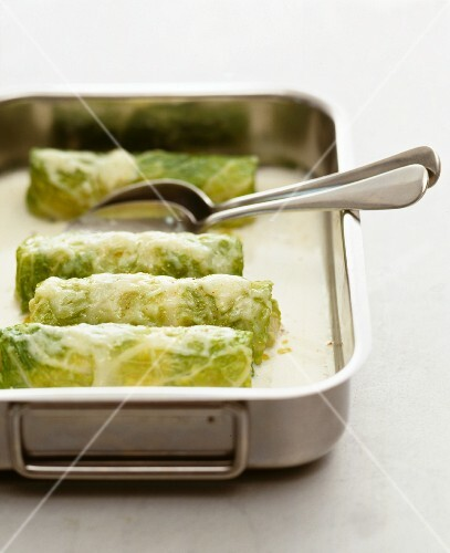 Rolled savoy cabbage leaves with a cheese sauce