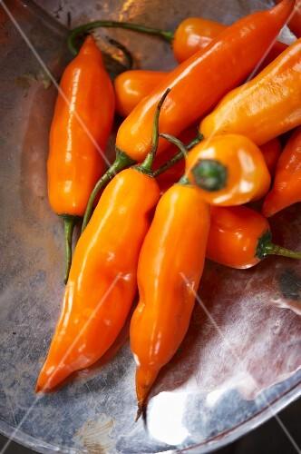 Orange chillies