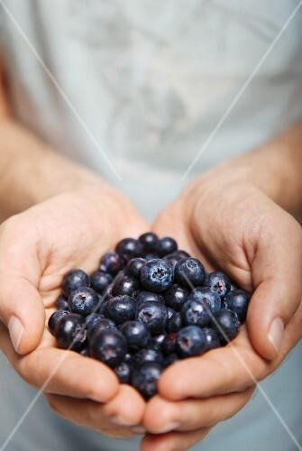 A man's hands holding fresh blueberries