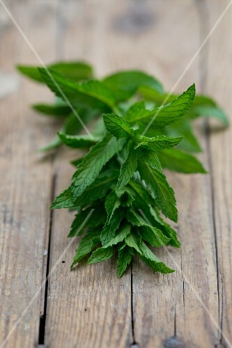 Fresh peppermint (Mentha piperita) on a wooden table