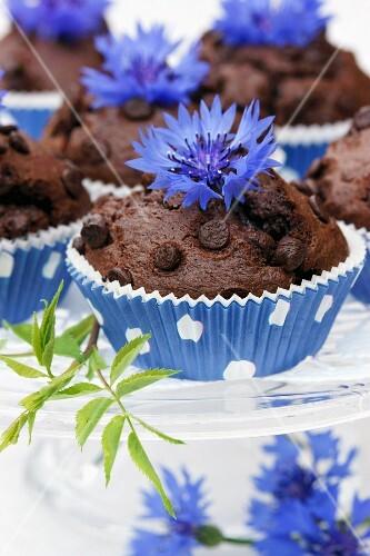 Chocolate muffins with cornflowers