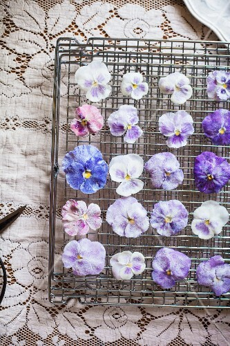 Candied Pansies and Violas