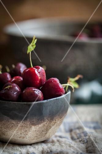 A bowl of Fresh Cherries