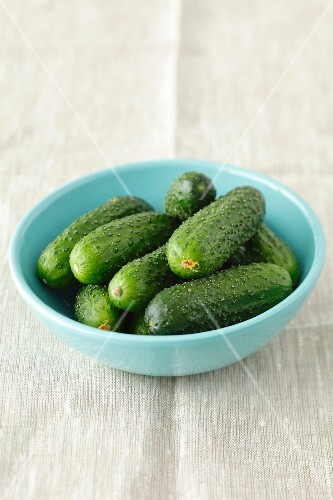 Several pickling cucumbers in a pale blue bowl