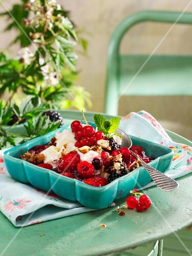 Berry compote with frozen yoghurt and hazelnut brittle