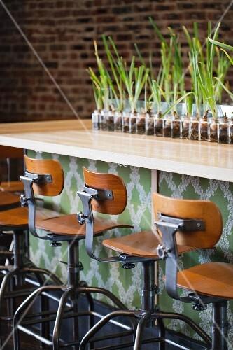 Stools at a Bar; Row of Bulbs on Bar