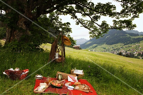 A picnic with a beautiful mountain view