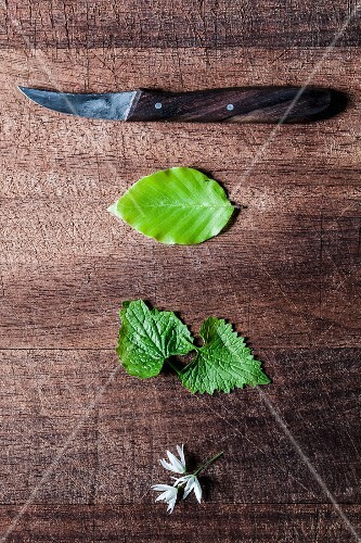 Assorted fresh herbs with a knife on a wooden surface