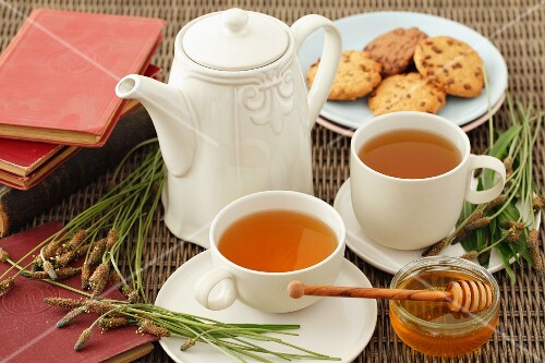 Ribwort plantain tea with honey and cookies