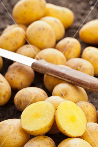 Small potatoes of the variety Goldniere, whole and cut in half