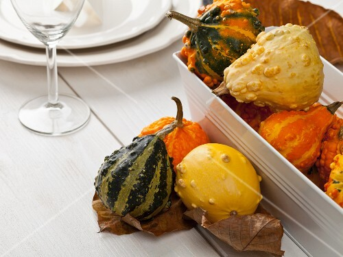 An autumn table decoration with ornamental squash
