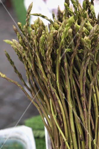 Wild, green asparagus in a container