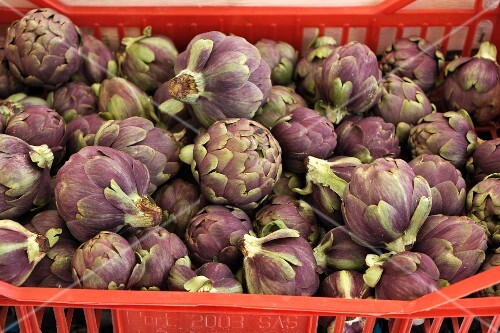 Purple artichokes in a red crate at the market