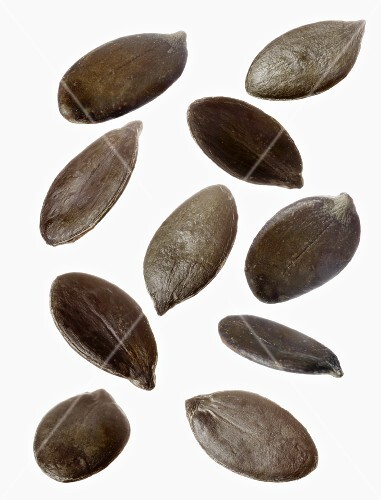 Several pumpkin seeds against a white background