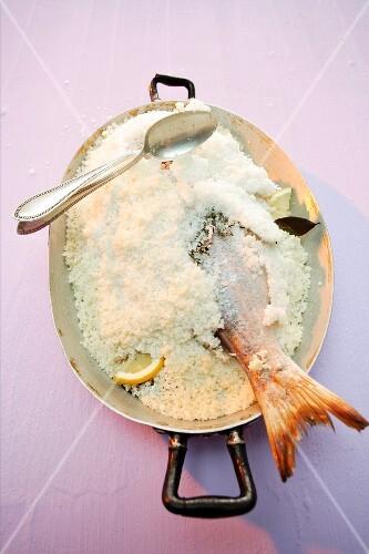 Stuffed fish in a salt crust