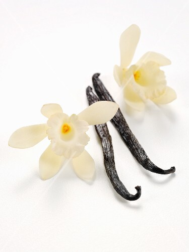 Vanilla pods with vanilla flowers against a white background