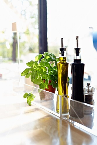 Olive oil, balsamic vinegar, a pepper mill and fresh basil on a glass table