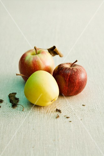 Three different kinds of apple