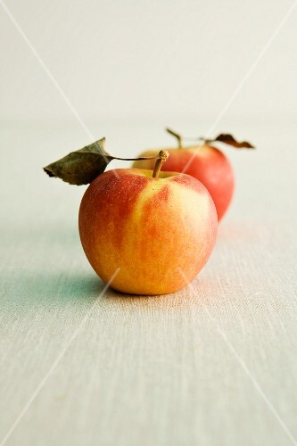 Two Elstar apples