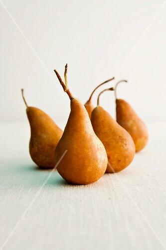 Five Kaiser Alexander pears