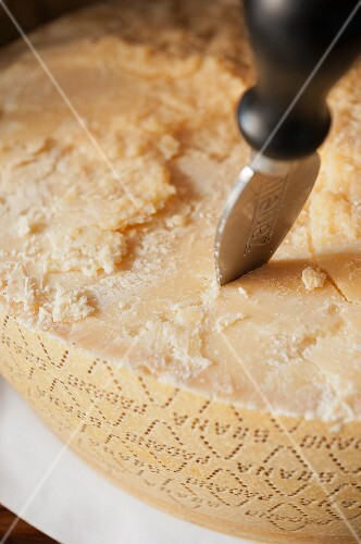 Parmesan with a cheese knife (close-up)