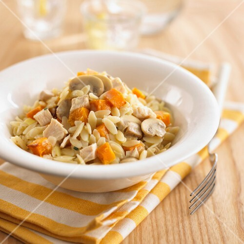 Orzo pasta with squash, mushrooms and chicken