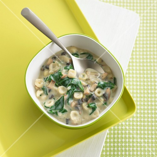 Pasta shells with spinach and mushrooms in a creamy sauce