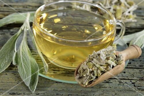 Greek mountain tea made from ironwort (Sideritis syriaca)