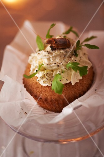 Cupcake with prawn salad