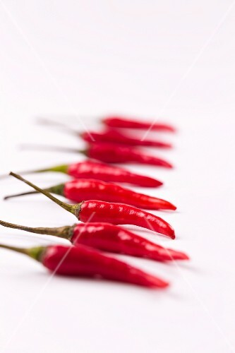Red chillies in a line
